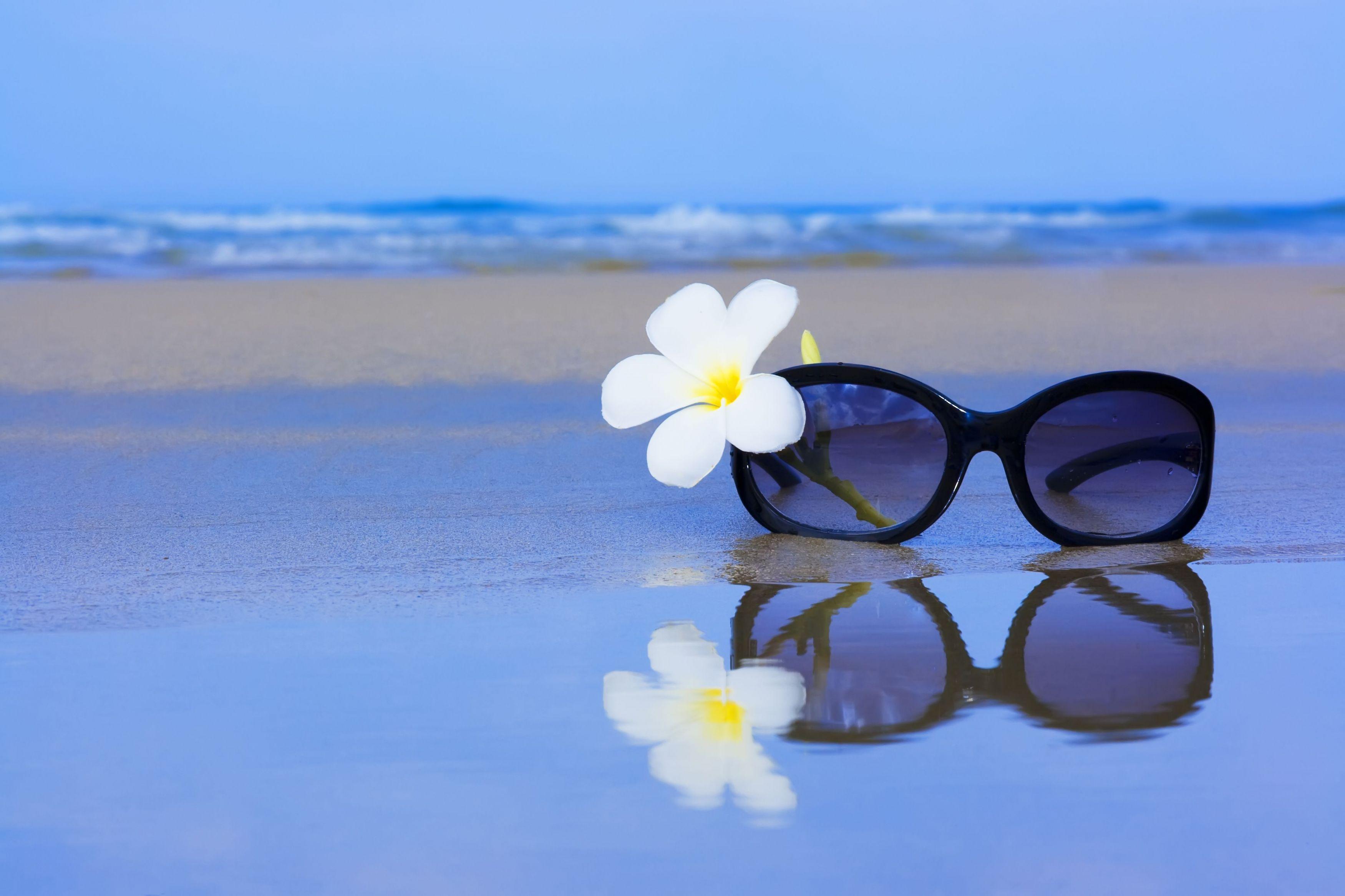 Park Ridge Sunglasses